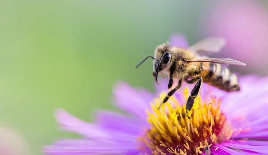 Are you a Marketing Buzzword Expert?